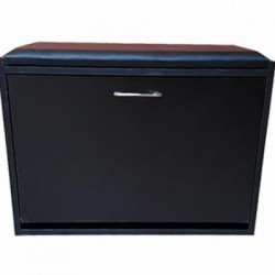 Ottoman Shoe Cabinet In 3 Colors, Includes Delivery