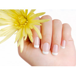 45 Minute Manicure Treatment From Kneaded  Escape Beauty Spa, Includes Complimentary Gift From Craze Deals